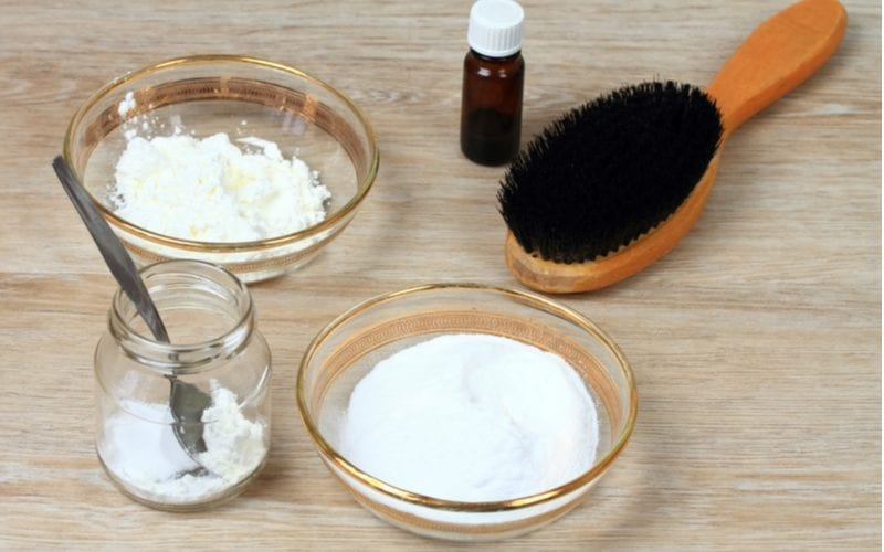 For a piece on how to remove hair dye, a photo of a boar bristle brush with some baking soda