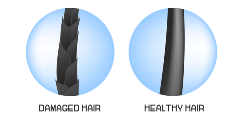 Side by side photo of weak vs healthy hair for a piece on how fast does hair grow
